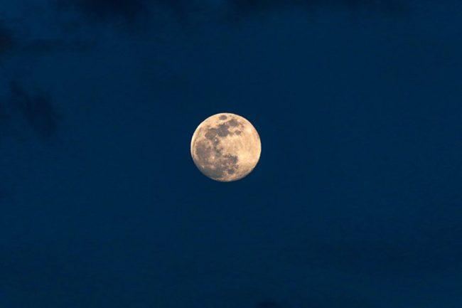 今夜は満月です