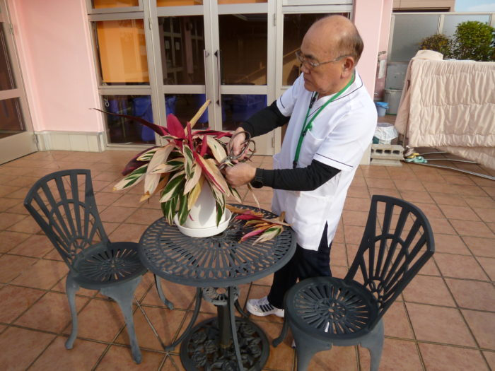 アーバンケア御厨 特別養護老人ホーム 頼れる営繕 様々な業務 清掃 修理 花壇整備