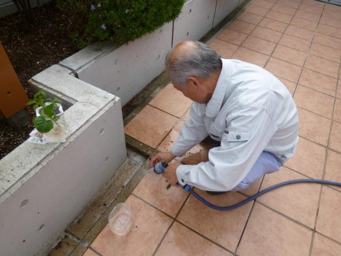 アーバンケア御厨 水耕栽培 トマト キュウリ アイコ 苗 水につけて慣らし期間